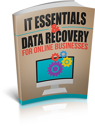 IT Essentials And Data Recovery For Online Businesse