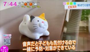 にゃんこ計(おはよう日本)