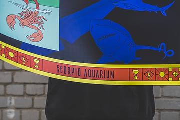 Scorpio Aquarium_detail.png