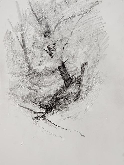 "Caleb Harman:  ""Drawing Along the Missouri River I"""