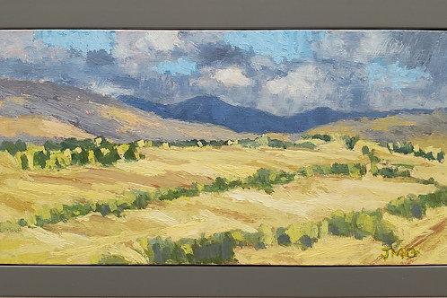 Hay Fields - Gunnison, CO