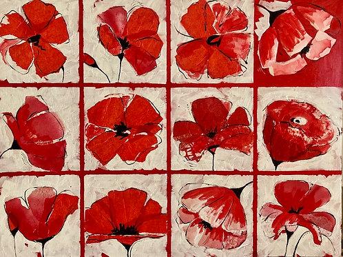Poppies by the Dozen