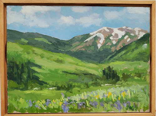 Whetstone Mt. - Crested Butte, CO