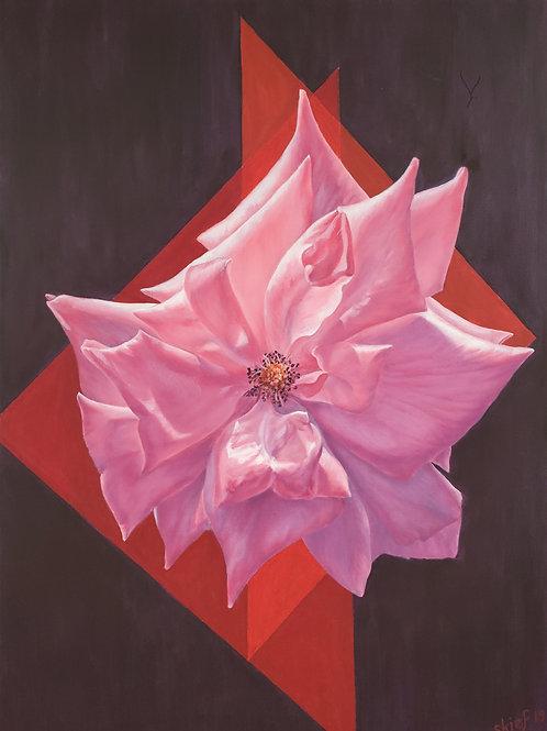 """Susan Kiefer: """"Pink Star Rose"""""""