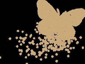 papillon-02.png
