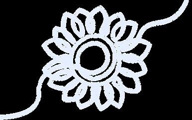 Sunflower-Lineart_Light-Blue_Web.png