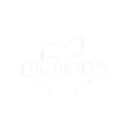 Riviera Organisation-Logotype-blanc.png