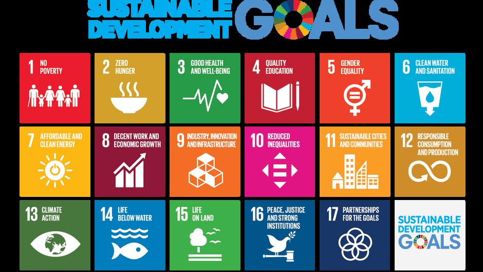 Unreasonable Goals