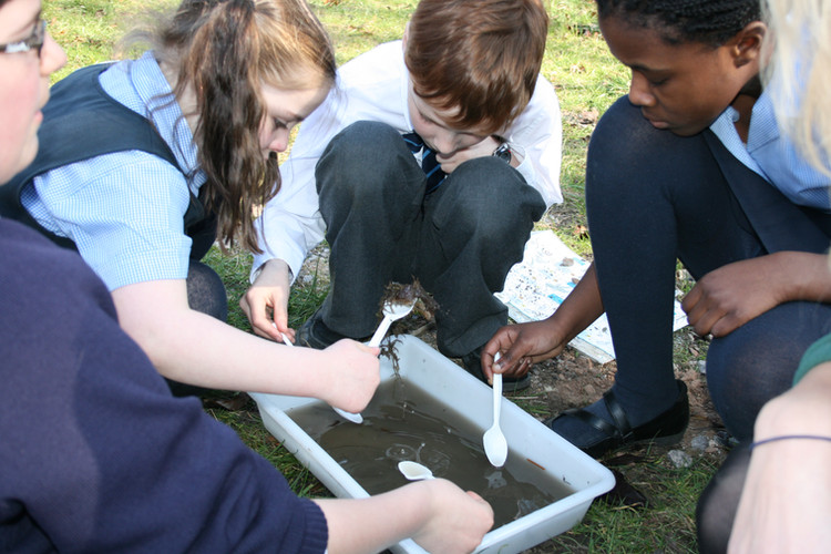 children pond dip bowl and spoons.jpg