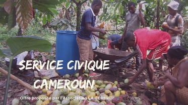 service civique wanted!