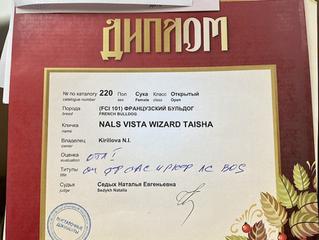 САС/Чемпионат РКФ