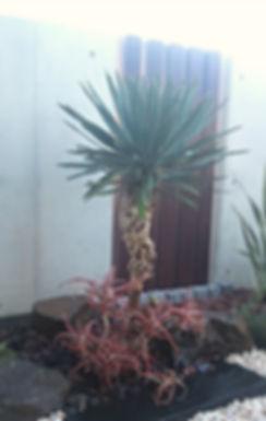 plantscapedesign sou  外構|植栽|江戸川区|ガーデニング