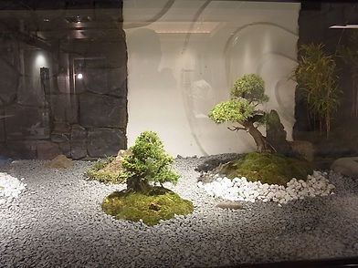 plantscapedesign sou 店舗|植栽|港区