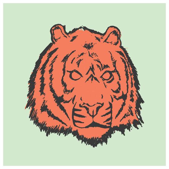 Free Tiger Illustration