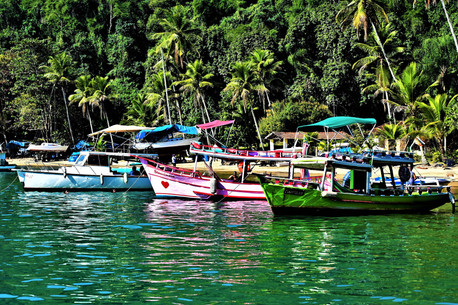 Fishing boats Mata Atlantica