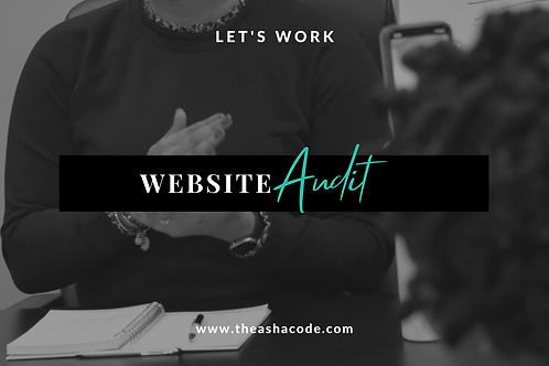 Website Audit Session