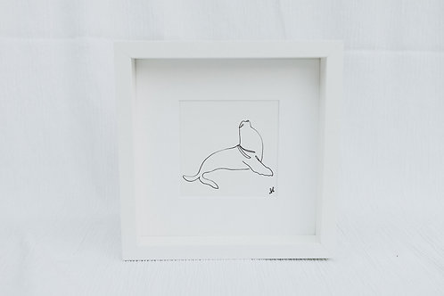 sea lion - illustration