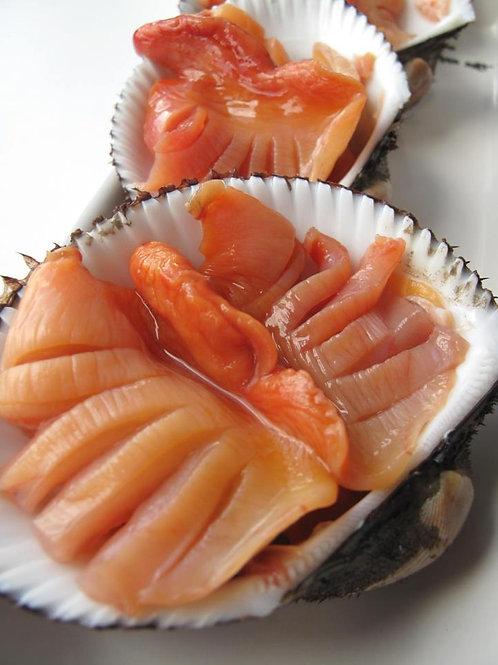 韓國活赤貝