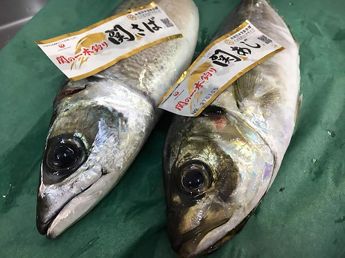 日本原條池魚仔刺身(季節限定)