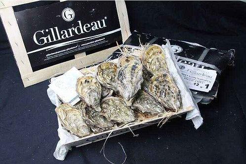 (需預訂 )原箱生蠔 - 法國Gillardeau N1 48隻