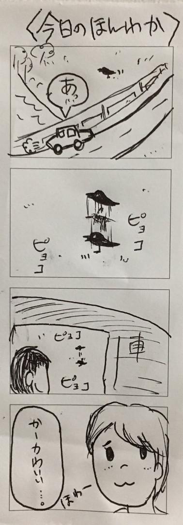 No14今日のホンワカ.jpg