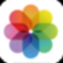 カメラロール ロゴ.png