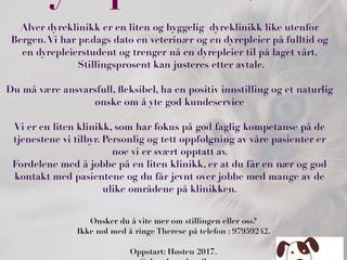 2017- Alver Dyreklinikk søker dyrepleier.