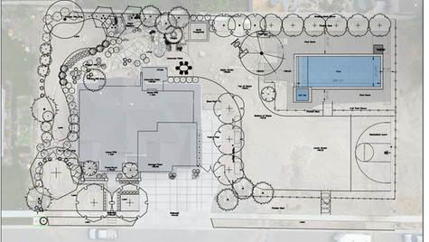 Dz-Planting Plan-4