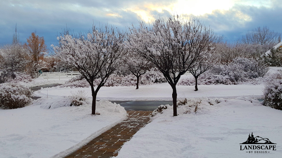 PL-Winter-5