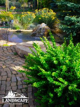 W-Orn. Fountains-4