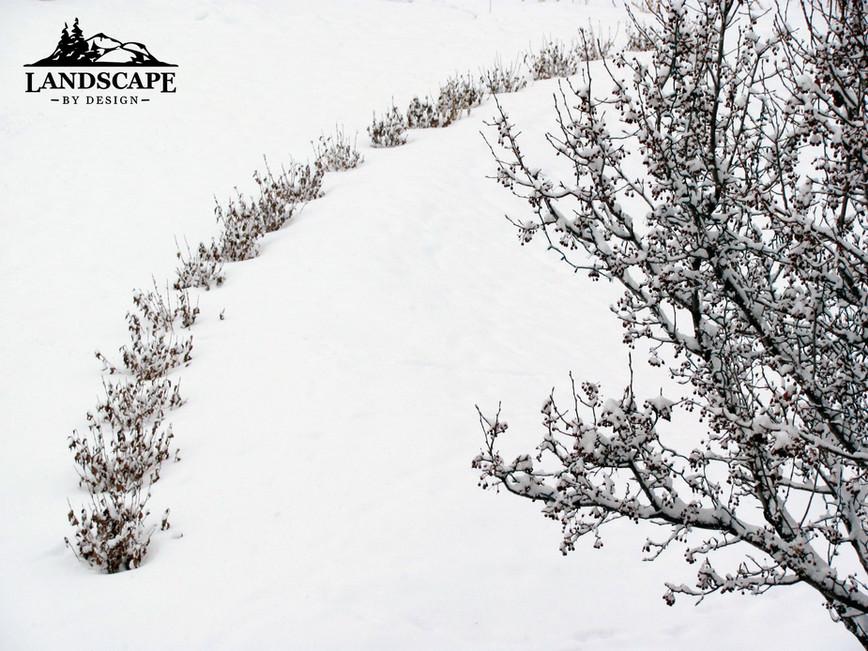 PL-Winter-11