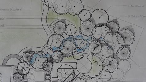 Dz-Planting Plan-5