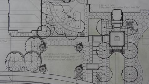 Dz-Planting Plan-2