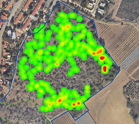 GIS ייעוץ סביבתי - סקר גיאופיטים, מיפוי