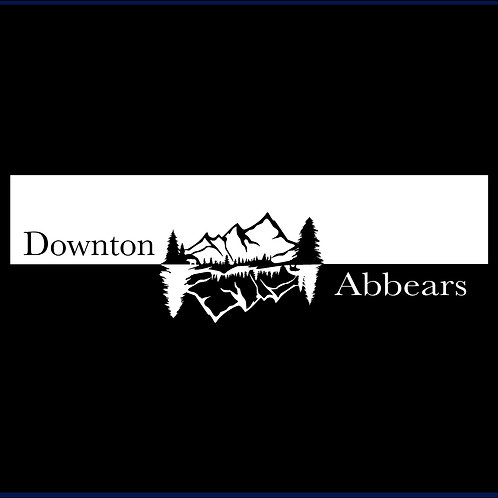 DOWNTON ABBEARS / TV