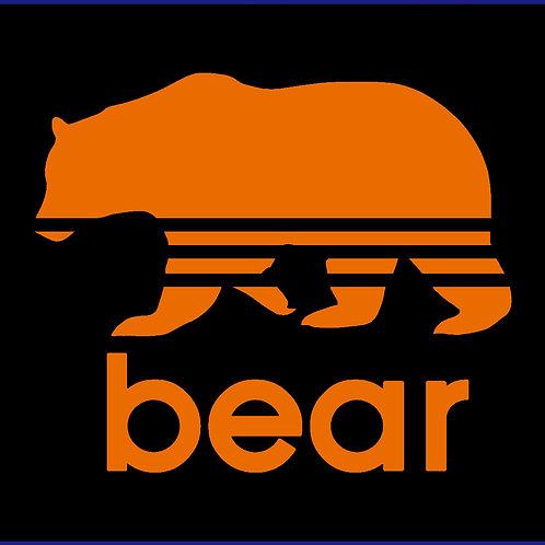 BEAR 3 / CSC