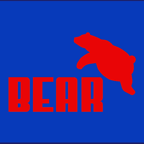 BEAR 1 / 2TS