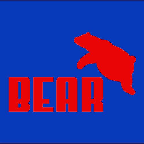 BEAR 1 / TS