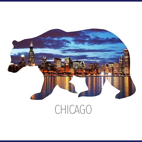CHICAGO / TS