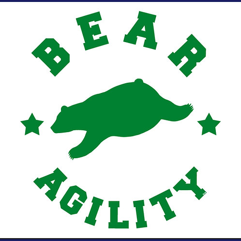 BEAR AGILITY / TS FLK