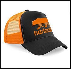 BLACK ORANGE CAP HARTZAK AD.jpg