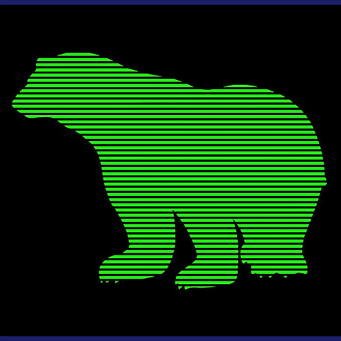 MOIRE BEAR / TS NEON