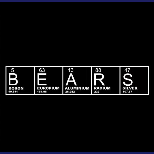 BEARS ELEMENTS / TS