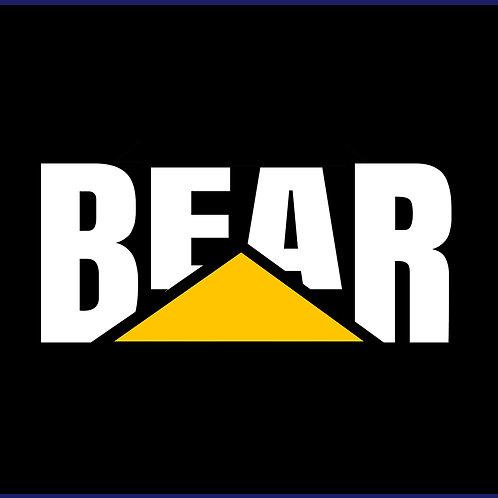 BEAR 2 / TV