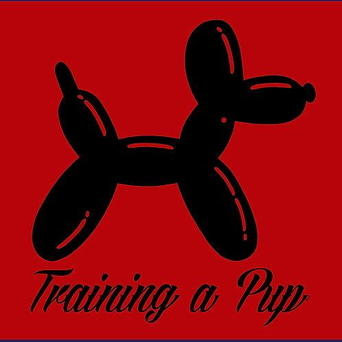 TRAINING A PUP / TS SS