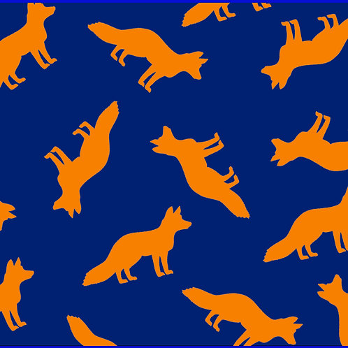 FOXES EVERYWHERE / TV