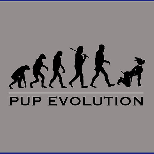 PUP EVOLUTION / TV