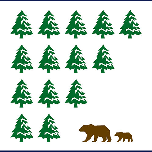 BEAR FOREST / BSS