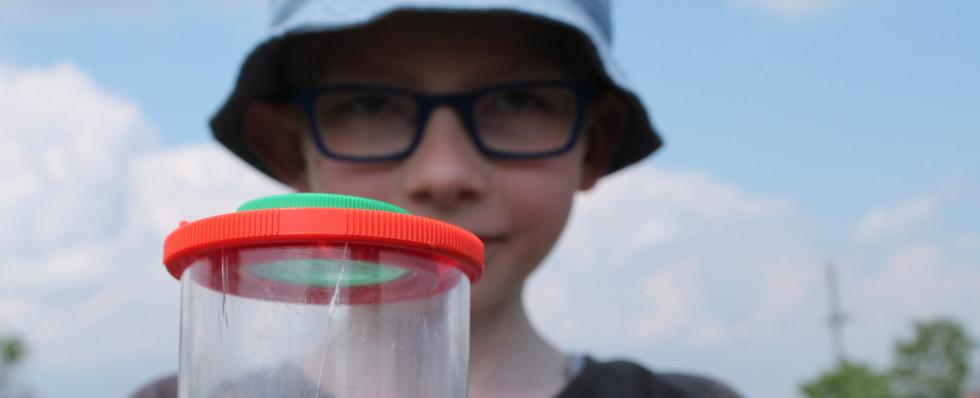 Seltenheiten: Was in Goßmannsdorfs Urwäldern wächst
