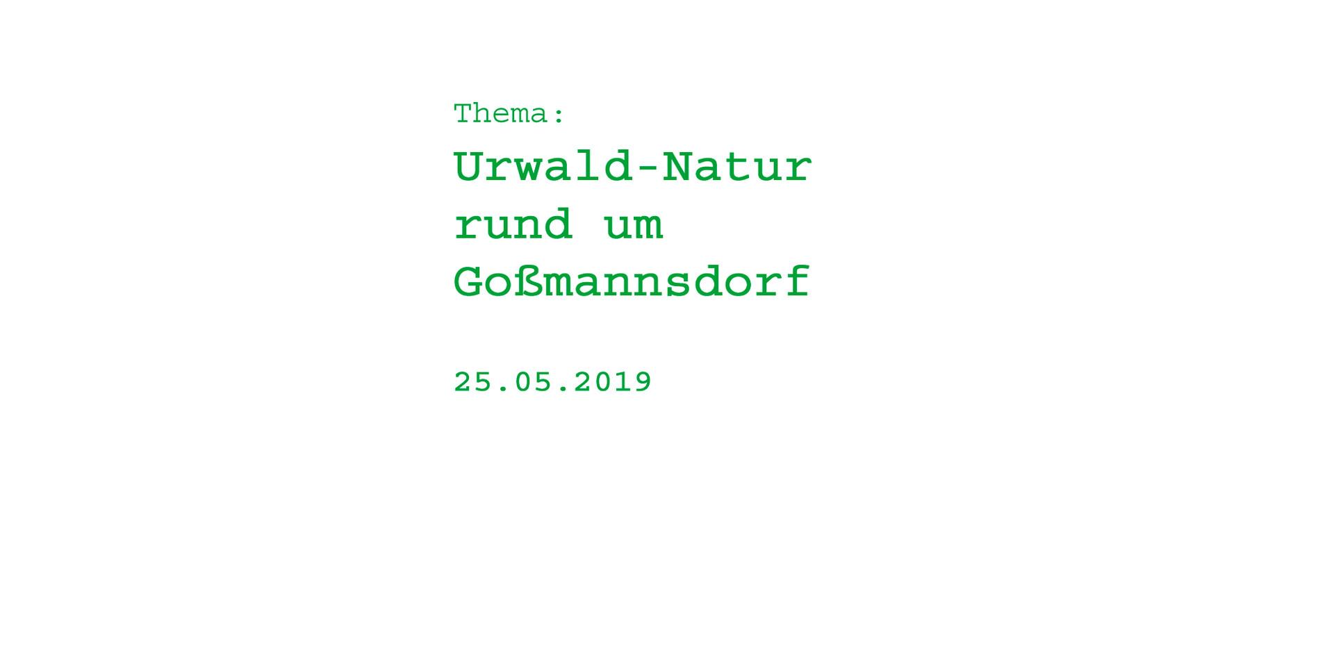 Urwald rund um Goßmannsdorf